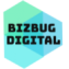 BIZBUG Digital: Digital and Social Media Agency in Pakistan